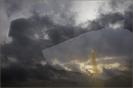 Aronskelk Wolken Combi