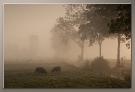 01 chapen in de mist